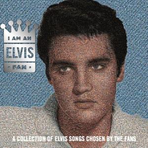 Elvis Fan Mosaic