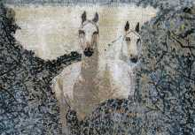AN119 Beautiful white horses in bush Mosaic