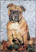 AN256 Bulldog Cute  Mosaic