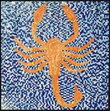AN294 Orange scorpion on blue background Mosaic
