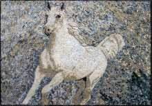 AN97 Beautiful white horse Mosaic