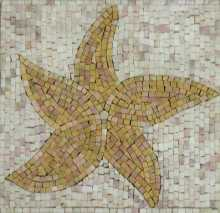 IN281 Mosaic